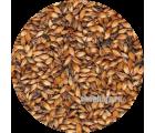 Солод ячменный Карамельный EBS 200 (Курский солод) 1 кг